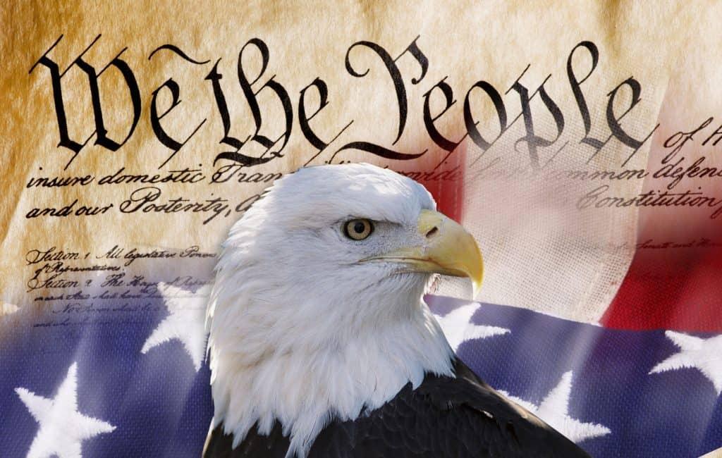 U.S. Constitution Class